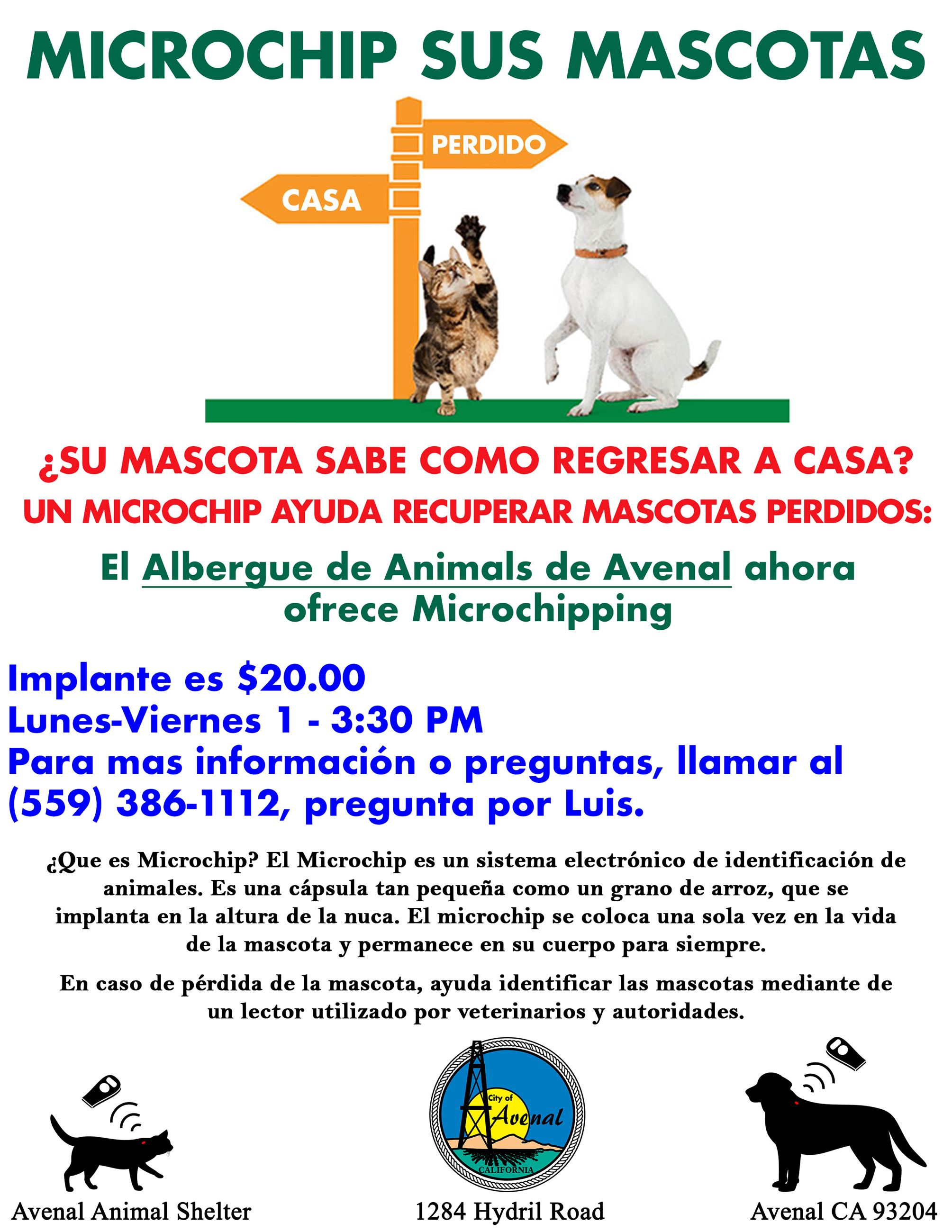 Microchipping Avenal Flyer Spanish 2020